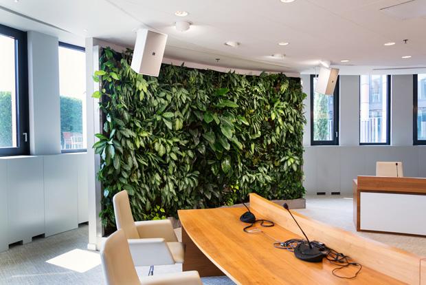 living wall, a biophilic design element